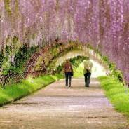 5 kroków do raju na ziemi
